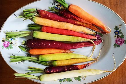 Melting-pot de carottes © Lucasd Jaron Diététicien En Equilibres